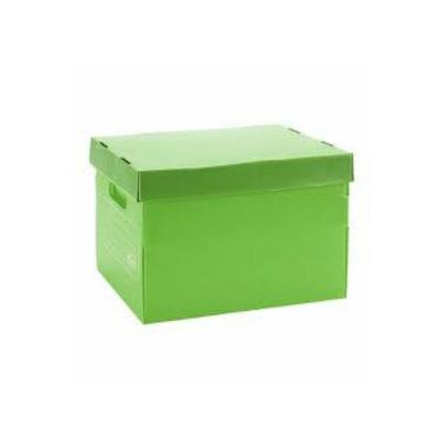 Caja Archivo Plastica Con Tapa 45x35x25 Verde
