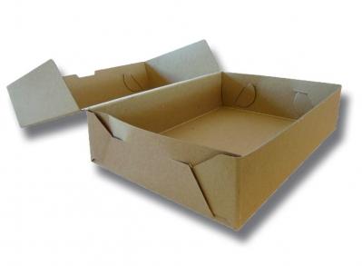Caja Archivo Carton A4 12 Tapa Volcada